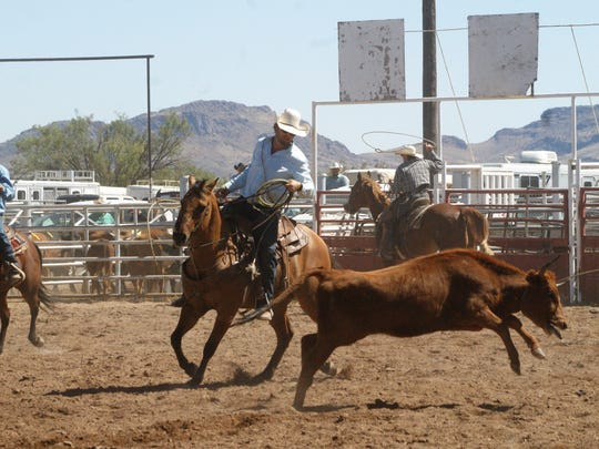 Team roping was one of several competitions at Saturday's Ranch Rodeo at the SW New Mexico State Fair.