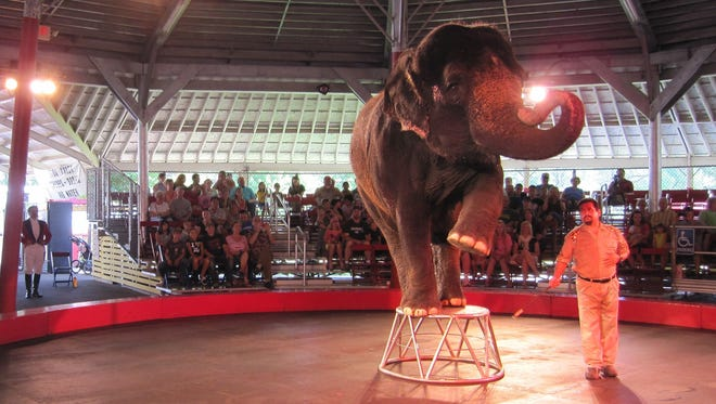 Circus World in Baraboo will continue using elephants in its big top shows.