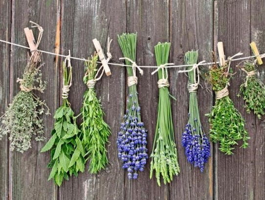 Two classes on cooking with herbs will be offered in