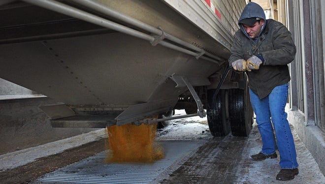 Dylan Shaver, with the Hartford Farmers Elevator, unloads distillers grains, a byproduct of the ethanol making process, Friday, Jan. 27, 2017, at the Hartford Farmers Elevator in Hartford, S.D. Grain is a major export for South Dakota, which imports and exports millions of dollars worth of goods to and from Mexico every year. South Dakota authorities are worried about a trade war with Mexico after the White House's statements regarding a 20 percent import tax on Mexican goods.