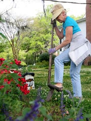 The Tallahassee Garden Club has its annual garden show