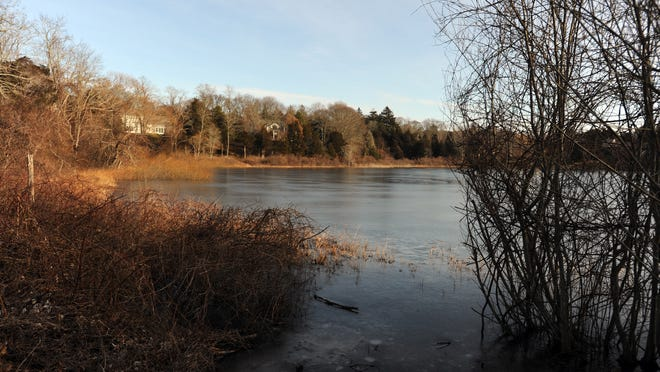 Uncle Harvey's Pond in East Orleans is among the many waterways across the Cape plagued by nitrogen pollution. But a proposal to use alum to treat the pond has been met with criticism from some residents.
