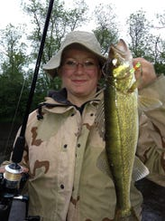 Walleyes have begun to fill the St. Louis River once