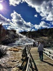 Fall in Yellowstone 2