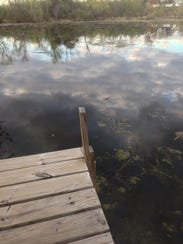 A dock leads to the waters of Duck Bay.