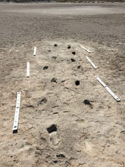 Two human footprint trackways at White Sands National