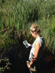 Ida Whitney monitoring  the oxygen level of the stream water in 2016.