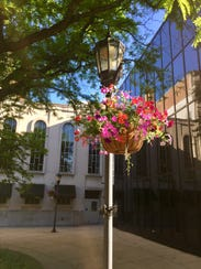 The Garden Club of York provided hanging baskets, which