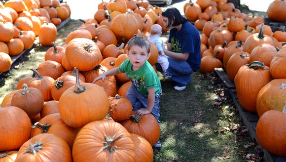 Pumpkins are now available at the WNC Farmers Market,