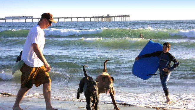 Dog lovers flock to Dog Beach, which is among San Diego's 70 free beaches.