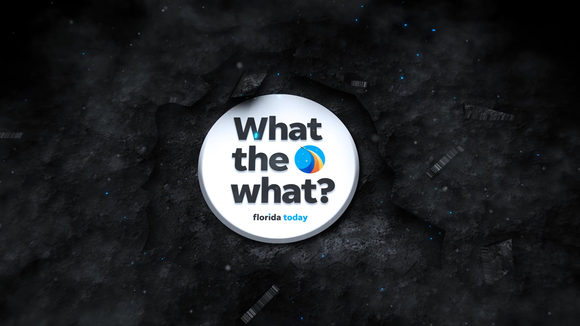 What the What?!? is a new slightly irreverent, always informative new video segment from FLORIDA TODAY. Look for it weekly at 9 p.m. Mondays.