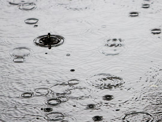 Raindrops create a pattern in Telegraph Creek off North River Road in Alva.