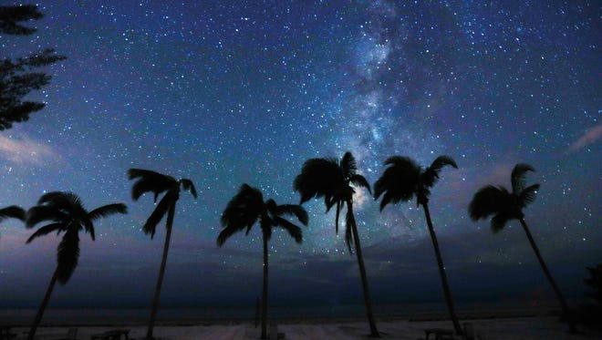 Wind blown palm trees and the stars dot the landscape at the Red Coconut R.V. Park on Fort Myers Beach on Tuesday 9/12/2017. Without power due to Hurricane Irma, the stars are more visible to the naked eye with out the light pollution.