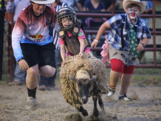 Sheep riding at the Augusta County Fair.