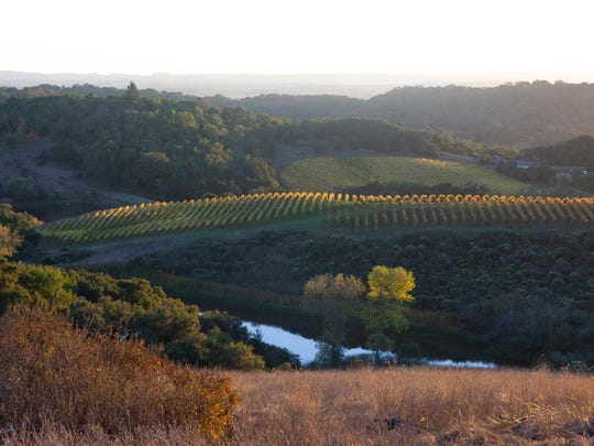 Chalk Hill Estate Vineyard and Winery in Sonoma, California.