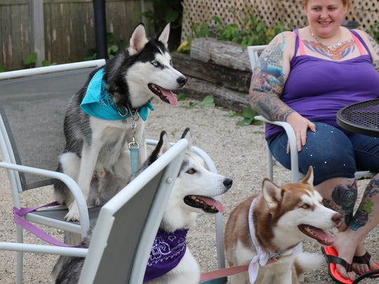 Furry guests take a seat at Yappy Hour at MoJo in Sheboygan
