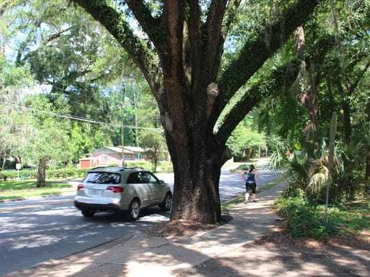 A runner on Betton Road enjoys our urban forest.