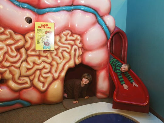 The Body Smarts exhibit at the Eau Claire Children's