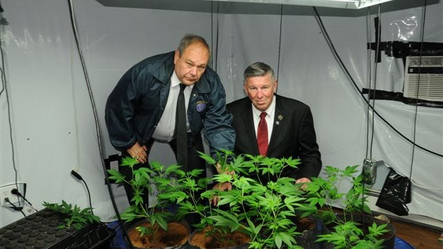 Chief Investigator Gerald Schramek, left, and Putnam Sheriff Donald B. Smith, with marijuana plants found at a grow house in Lake Peekskill in 2013.