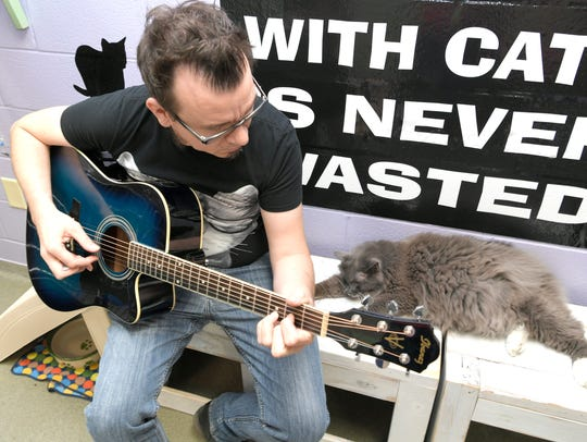 A cat takes a nap while Nashville musician Michael