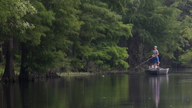 Tanner Caldwell fishes at Chemin-A-Haut State Park in Morehouse Parish on Wednesday, June 2. Caldwell caught eight bass and said it was his third time fishing in the state park, which may be among a dozen state parks to close later this year in an effort to cut Louisiana's budget by 30 percent.