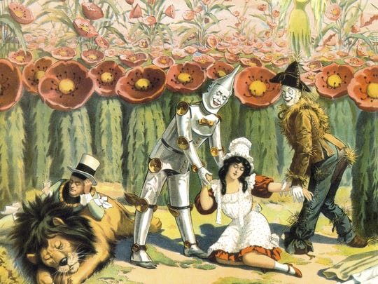 """The deadly poppy field, an episode taken from the original L. Frank Baum book """"The Wizard of Oz,"""" was also featured in the 1939 movie version. But perhaps the most  spectacular rendition was in the 1902 Broadway musical production, in which the poppies were played by women in costume."""