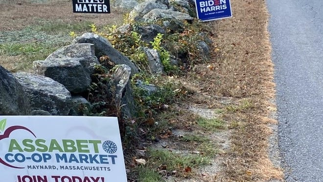 Lawn signs line an Acton road.