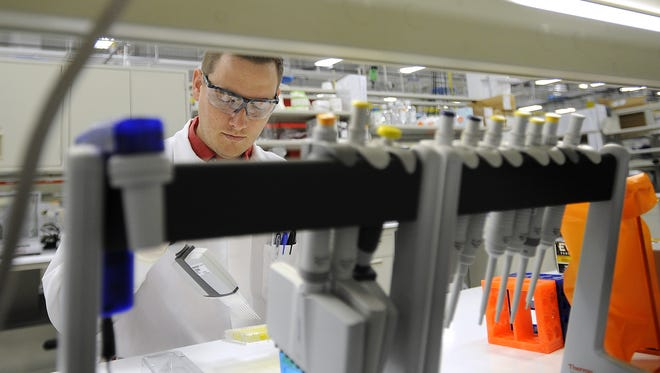 Jake Miles, Sr. Research Assistant, reads a protein concentration assay at SAB Biotherapeutics in Sioux Falls, S.D., Friday, July, 18, 2014.  Emily Spartz / Argus Leader Jake Miles, Sr. Research Assistant, reads a protein concentration assay at SAB Biotherapeutics in Sioux Falls, S.D., Friday, July, 18, 2014.