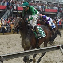 This week at the Preakness