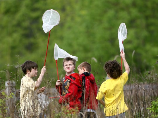 Boys look for insects at Cool Creek Park.