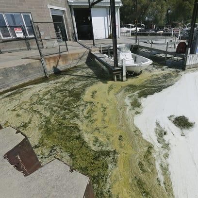 Blue-green algae and white foam along the Canandaigua