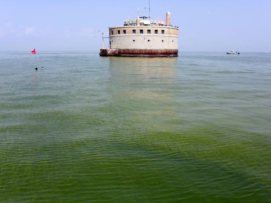 Lake Erie Algae_Olso.jpg