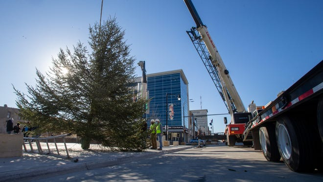 With the help of Capitol Crane and Bettis Contractors, the community Christmas tree was hoisted into place Tuesday morning in front of Evergy Plaza. The tree, a white spruce, was donated by the Parks for All Foundation from the Warren Nature Area in Topeka.