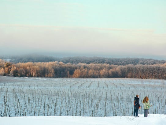 Ski Or Snowshoe To Wineries With These Winter Wine Tours