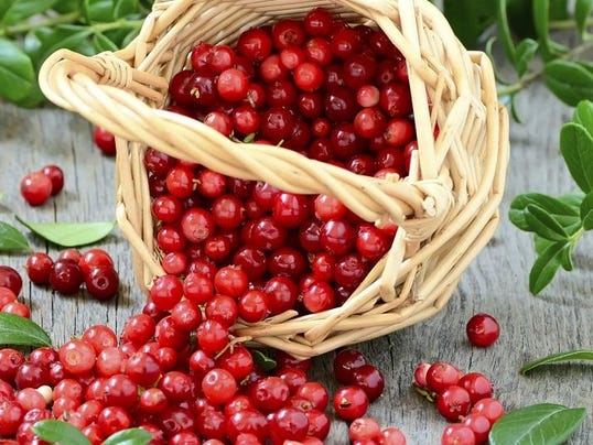 Cranberries 1.jpg