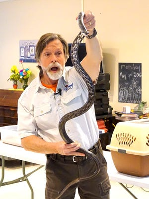 Naturalist Jack Hubley holds up a black snake during a visit last week to StoneRidge Poplar Run in Myerstown in celebration of National Nursing Home Week. Hubley also brought with him a red-tailed hawk, the largest hawk found in Pennsylvania; and a great horned owl. Poplar Run hosted several events for residents around a camping theme, including a camp fire, a nature walk and a butterfly release with butterflies that the residents cared for from the caterpillar and chrysalis stages. National Nursing Home Week spotlights nursing home residents, staff and volunteers and encourages all to celebrate those that make a positive difference in their lives every day. StoneRidge Poplar Run is a continuing care retirement community.