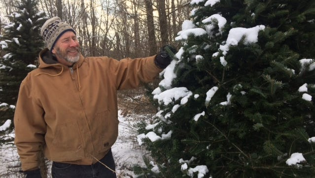 Regan Pourchot brushes ice and snow from the branches of a tree on his Mosinee Farm, Pheasant Pines.