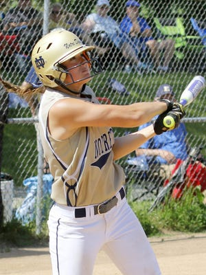 Notre Dame's Alivia Clark bats against Tioga in the Section 4 Class C title game.