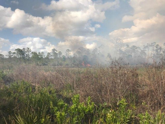 A wildfire broke out Wednesday afternoon, May 2, 2018, off State Road 710 near Indiantown. The blaze was contained at 60 acres.