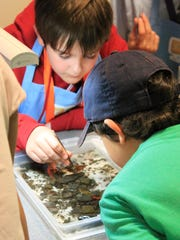 Weekly Wonders offers creative hands-on science activities at Sciencenter.