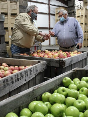 Apple grower Kenny Barnwell shows apples to USDA Under Secretary Bill Northey inside Barnwell's cold storage facility after a round-table discussion with local growers Tuesday morning.