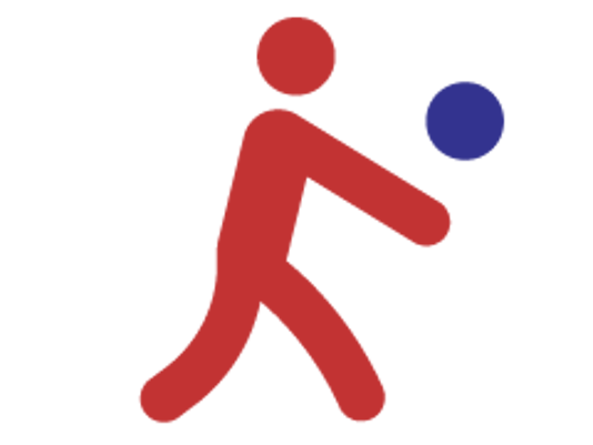 636461828807955681-nmaa-volleyball-desktop-icon.png
