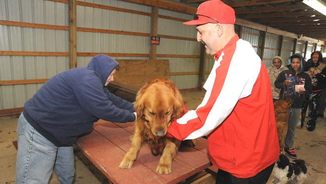 A dog is vaccinated at a rabies clinic in Cumberland County. Vineland is hosting a four-hour clinic on March. 19