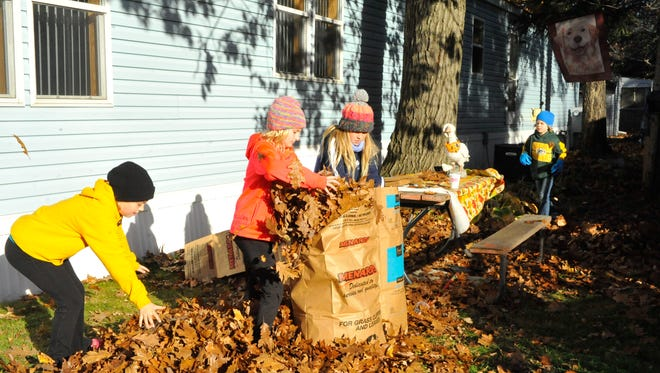 Girl Scouts from around the Marshfield area help clean up leaves from a yard on Peach Street in Marshfield Saturday, Oct. 22, as part of Day of Caring.