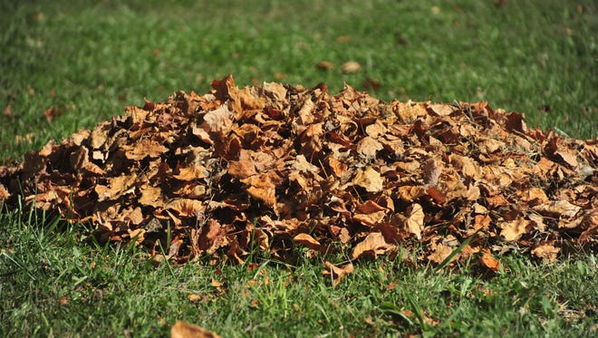 A pile of leaves was ready for pickup Monday morning in Galion.