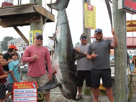 636637307769585549-Shark-1.jpeg