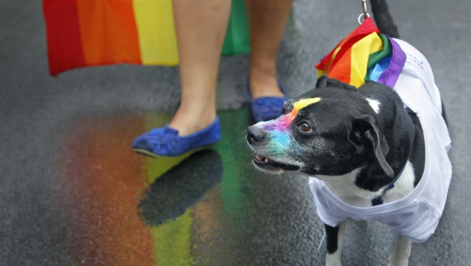 ROC Pride Fest kicks off with a parade down Park Avenue at 1 p.m. Saturday, July 16. The celebration then moves to  Cobbs Hill Park, where activities are scheduled through 9 p.m. Saturday and from 1 to 6 p.m. Sunday, July 17.