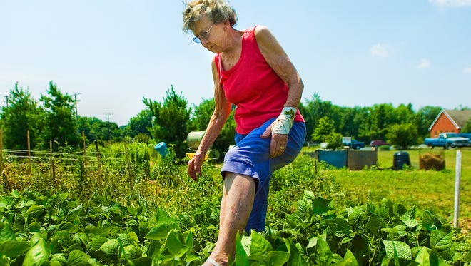 Adams County Penn State Extension will begin Master Gardener program classes in August.