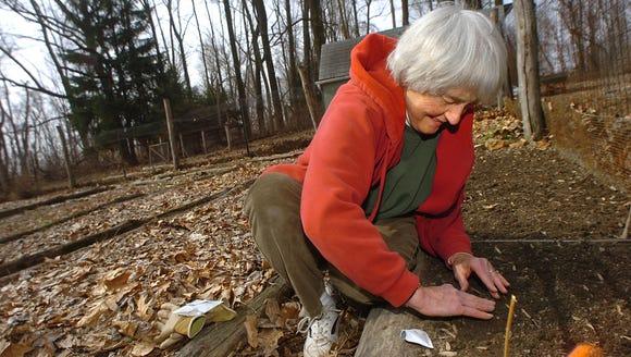 [LegacyArchive] LIVING. June Evans plants lettuce in