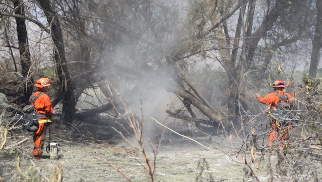 A dust tornado forms Tuesday as firefighters mop up a grove, which was identified as the Harrison Fire's point of origin. The fire burned 80 acres north of Avenue 66, between Harrison and Tyler streets in Thermal.